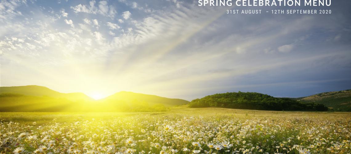 Blog image Spring 2020